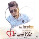 Dil Wali Gal songs