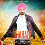 Sharaft songs