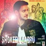Shokeen Gabru songs