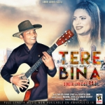 Tere Bina songs