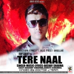Tere Naal songs