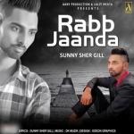 Rabb Jaanda songs