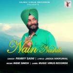 Nain Nashile songs