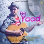 Teri Yaad songs