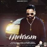 Mehram songs