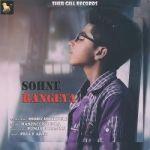 Sohne Rangeya songs