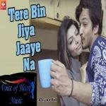 Tere Bin Jiya Jaaye Na songs