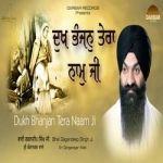 Dukh Bhanjan Tera Naam Ji songs