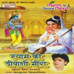 Shyam Ki Deewani Meera songs