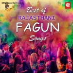 Best Of Rajasthani Fagun Songs songs