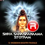 Listen to Shiva Sahasranaama Stotram songs from Shiva Sahasranaama Stotram