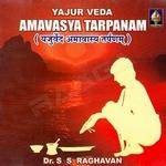 Yajurveda Amaavaasya Tarpanam - Vol 1 songs