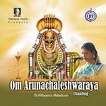 Om Arunachaleshwaraya songs