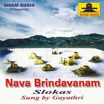 Navabridavanam & Slokas songs