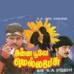 Chinna Poove Mellapesu songs
