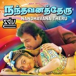 Nandavana Theru songs