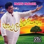 Paattu Paadavaa songs