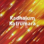 Kadhalum Katrumara songs