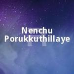 Nenchu Porukkuthillaye songs