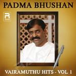 Padma Bhushan Vairamuthu Hits - Vol 1 songs