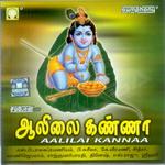 Aalilai Kannaa songs
