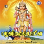 Palanimalaiyanea songs