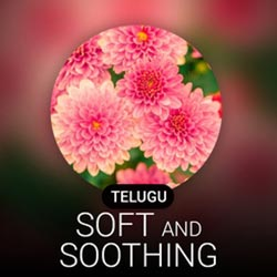 Telugu Soft & Soothing Radio