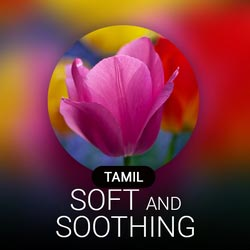 Soft & Soothing Radio